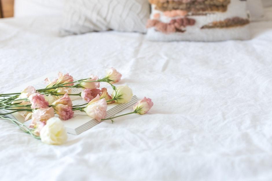 beautiful, bed, bedroom