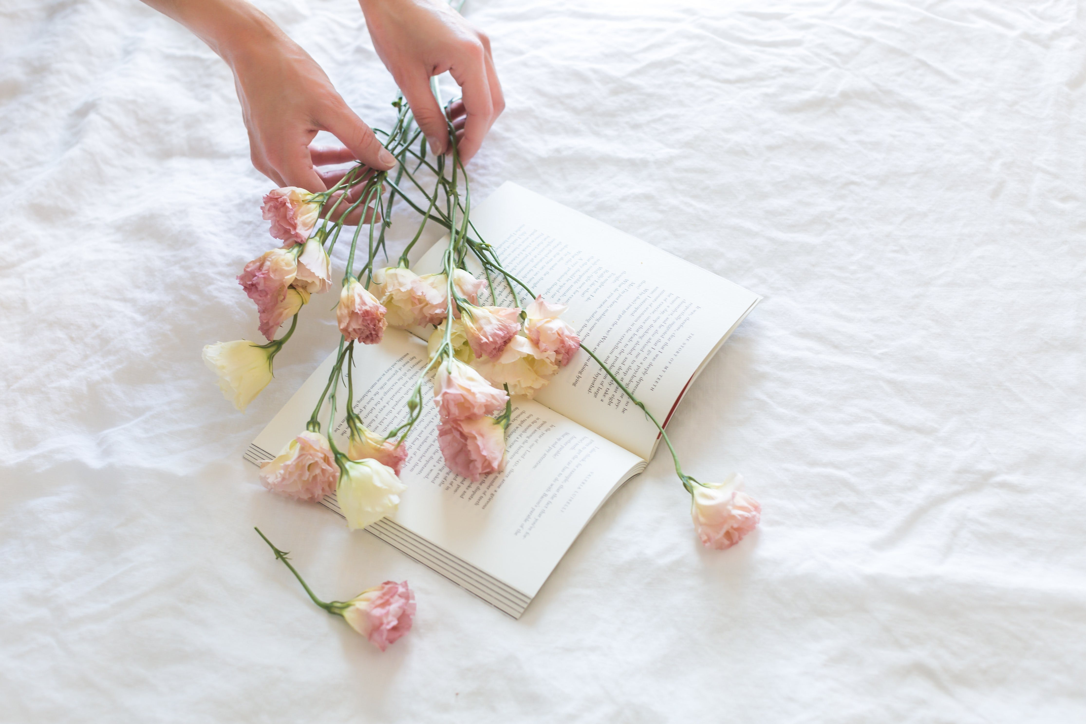 Pink-and-white Rose Flowers on White Printer Book