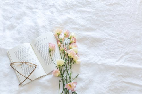 Yellow and Pink Flowers Beside Book