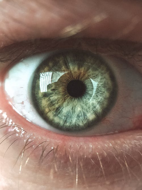 Closeup shot of crop faceless male gazing attentively at camera with widely opened green eye