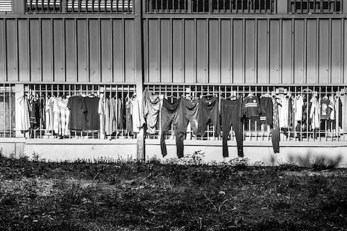 büyük aile, çamaşırlar, giysiler, kıyafetler içeren Ücretsiz stok fotoğraf
