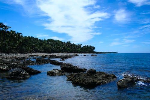 물, 바다, 바다 경치, 바위의 무료 스톡 사진
