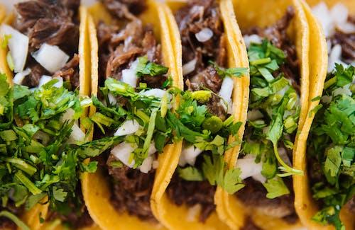 Gratis arkivbilde med avacado, chili, delikat, gate