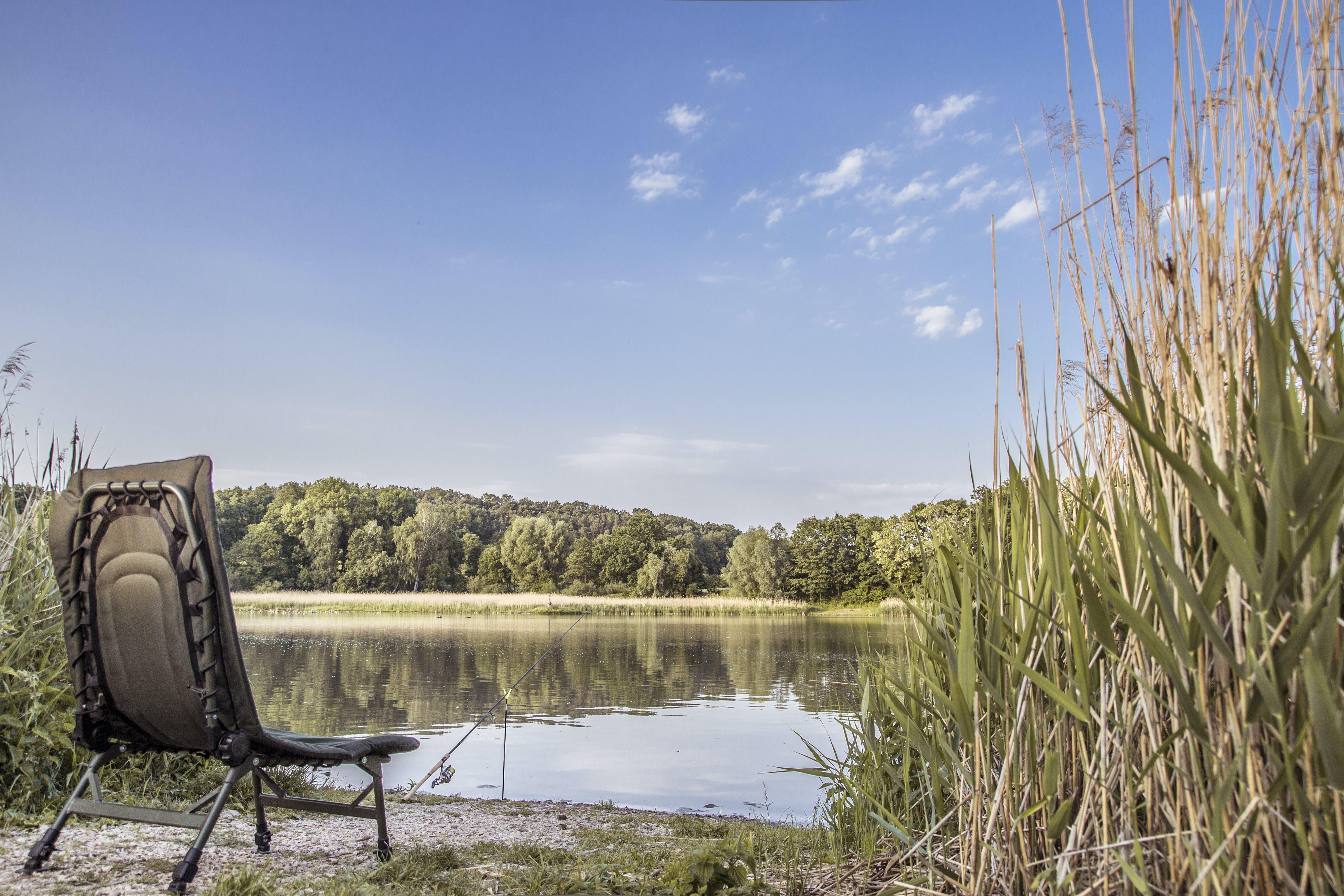 Free stock photo of camp, camping, fishing, fishing pole