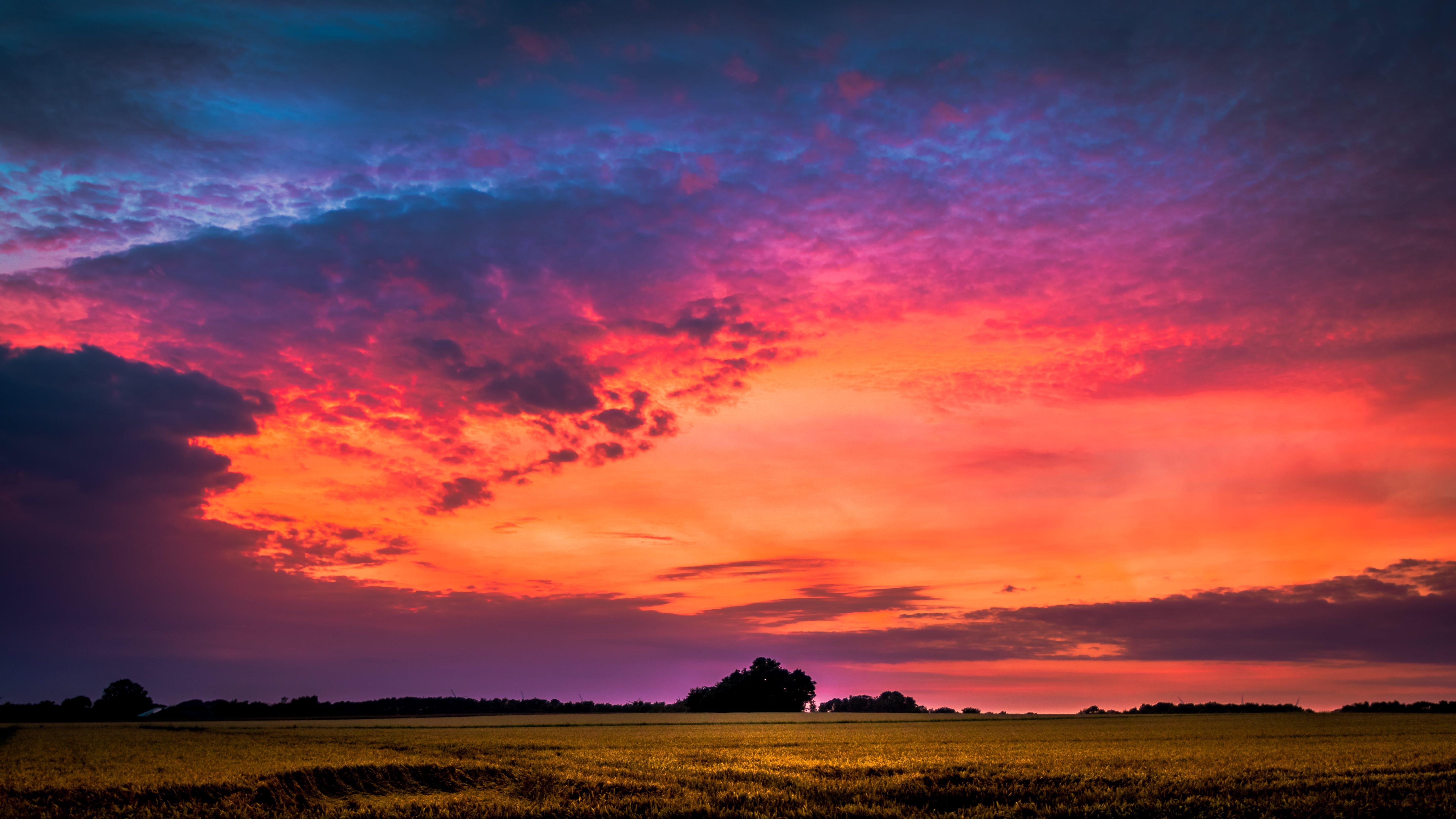 Ingyenes stockfotó békés, ég, fák, felhők témában