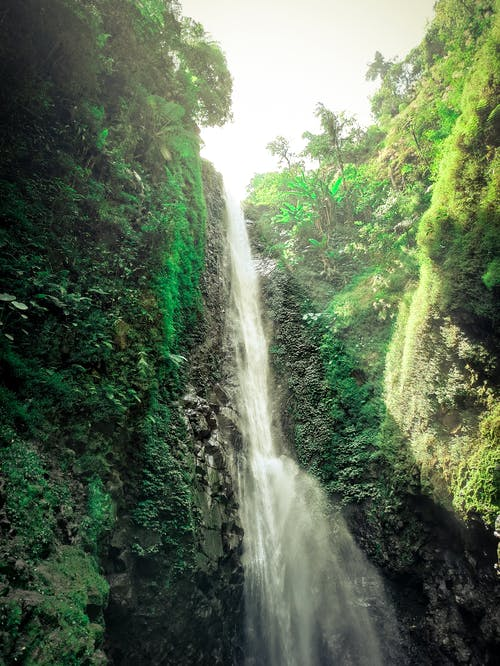 Waterfall falling through rocky ravine in green woods