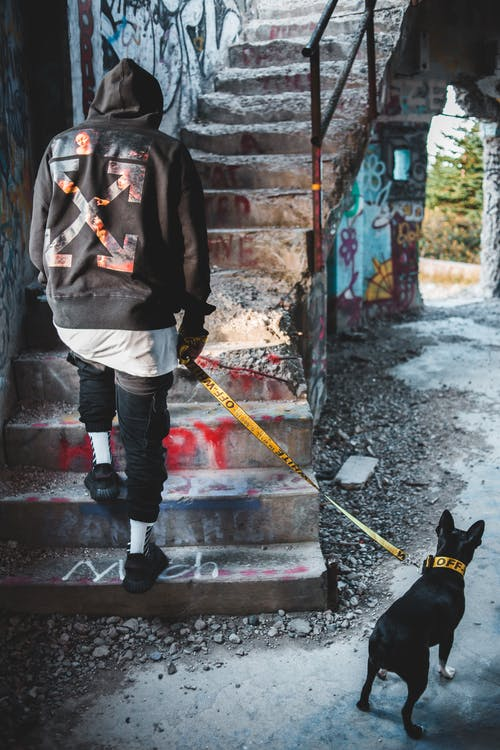 Back view full length of faceless stylish male owner with Boston Terrier on leash walking upstairs in abandoned construction