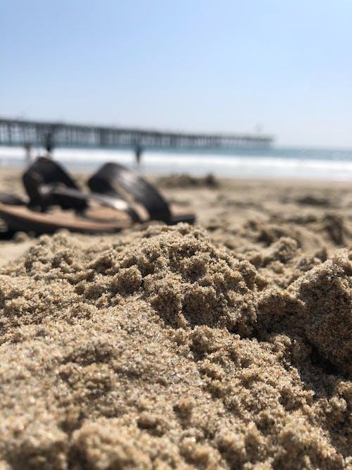 Free stock photo of beach, blue skies, happiness