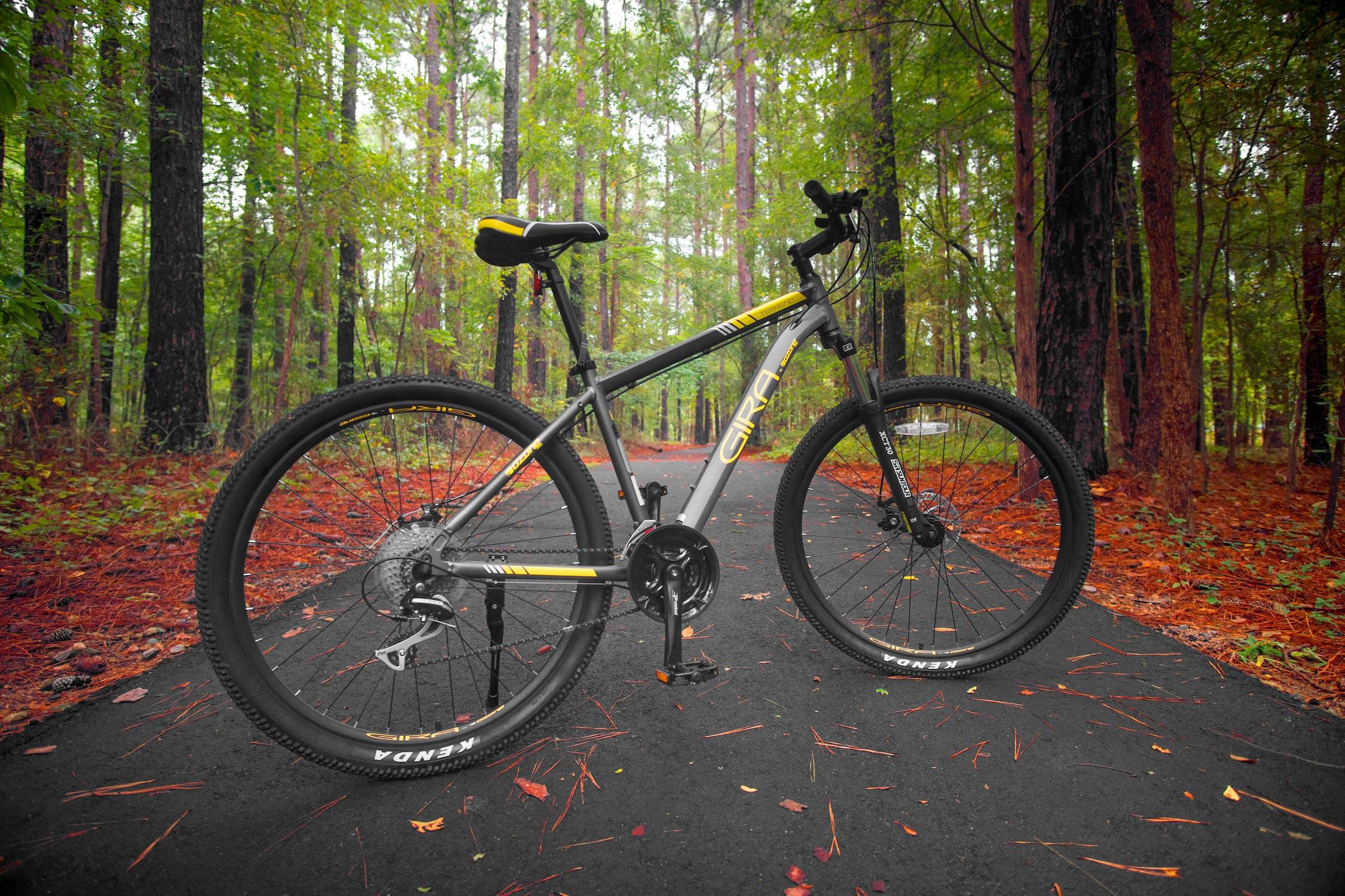 Odpružené horské kolo