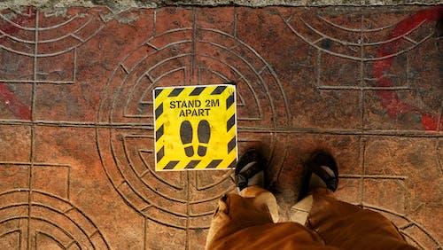 Immagine gratuita di distanza sociale, educação a distância, in piedi