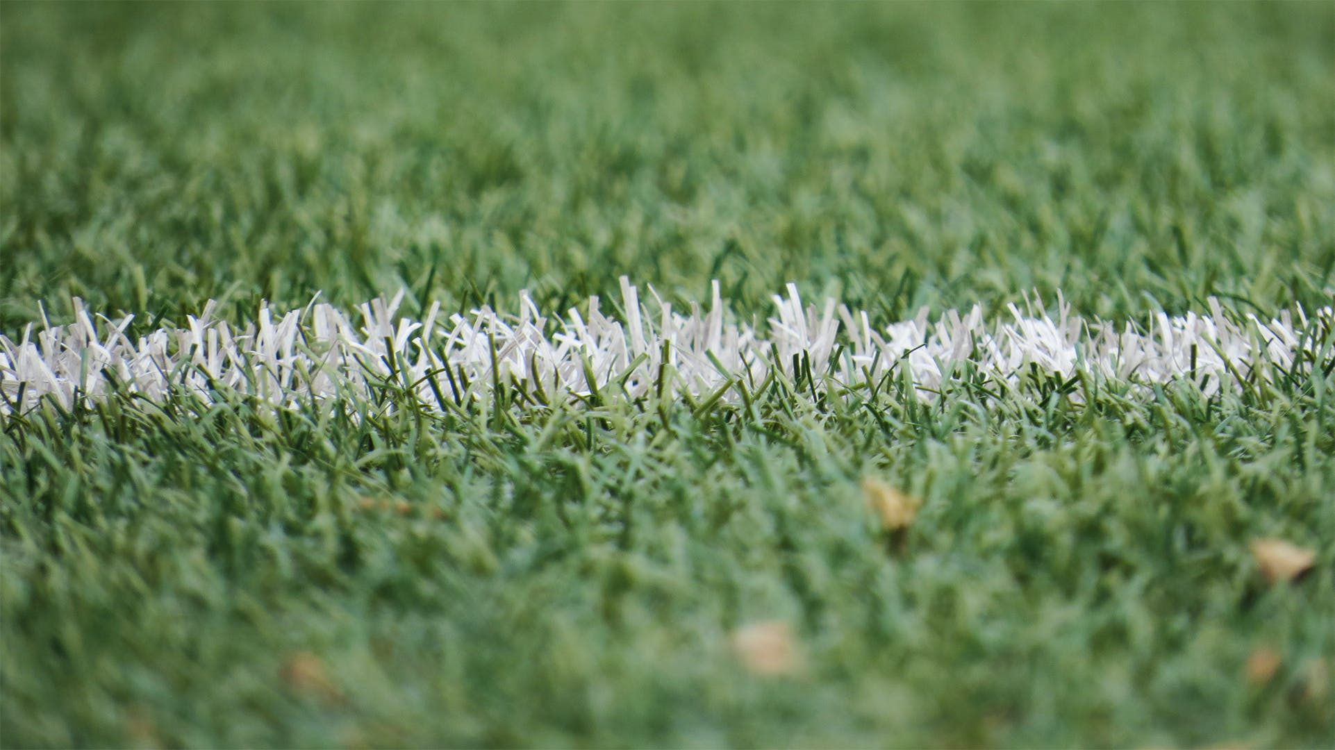Free stock photo of field, grass, grassland, football
