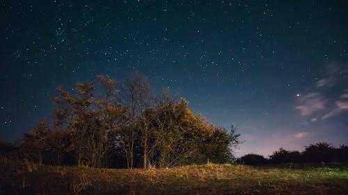 Δωρεάν στοκ φωτογραφιών με galaxy, αστερισμός, αστρονομία, αυγή