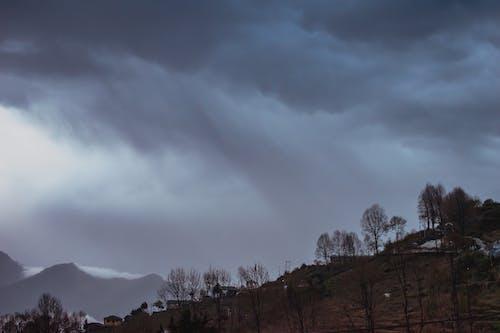 Foto stok gratis alam, angin ribut, angin topan, badai