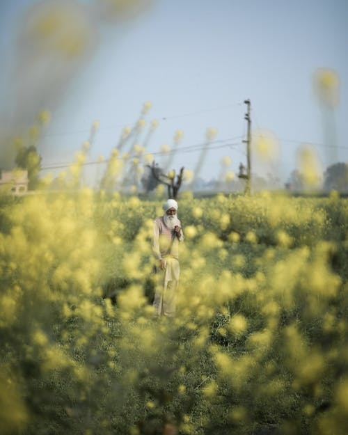 Man in White T-shirt and Blue Shorts Running on Yellow Flower Field