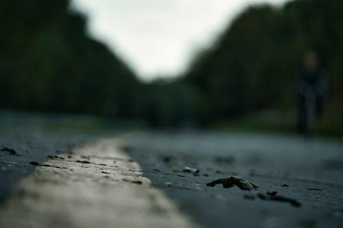 Бесплатное стоковое фото с размытие фона, темный, улица