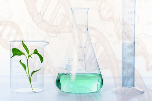 Free stock photo of agriculture, biology, chemical formula