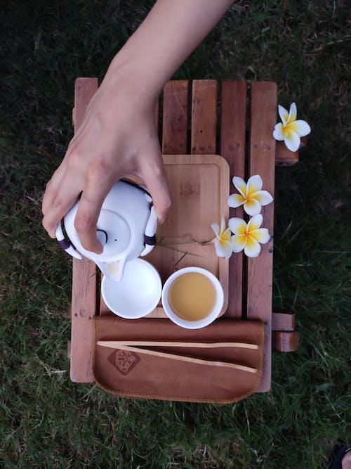 Free stock photo of pouring tea, tea
