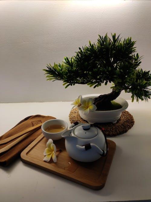 Free stock photo of teatime