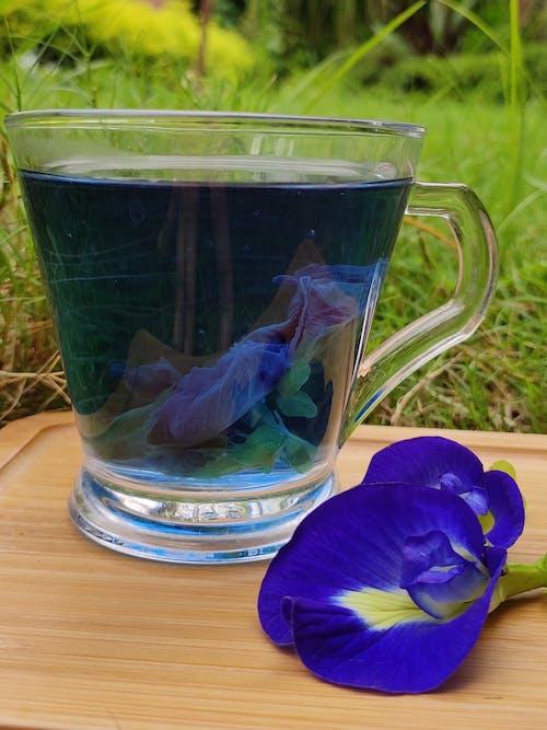 Free stock photo of blue, tea