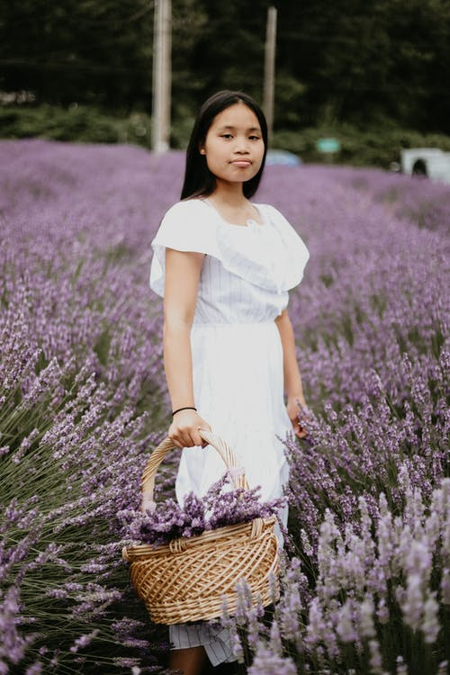 Charming young female with basket of fresh flowers standing in lavender field and looking at camera