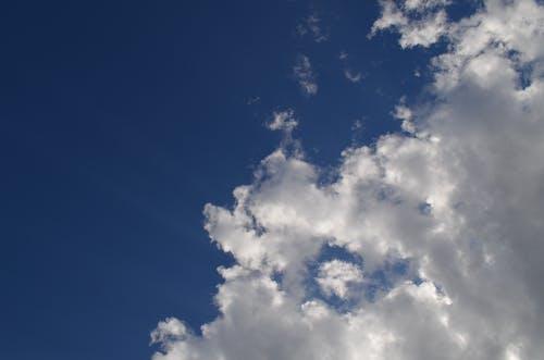 Foto profissional grátis de alto, área, atmosfera, atraente