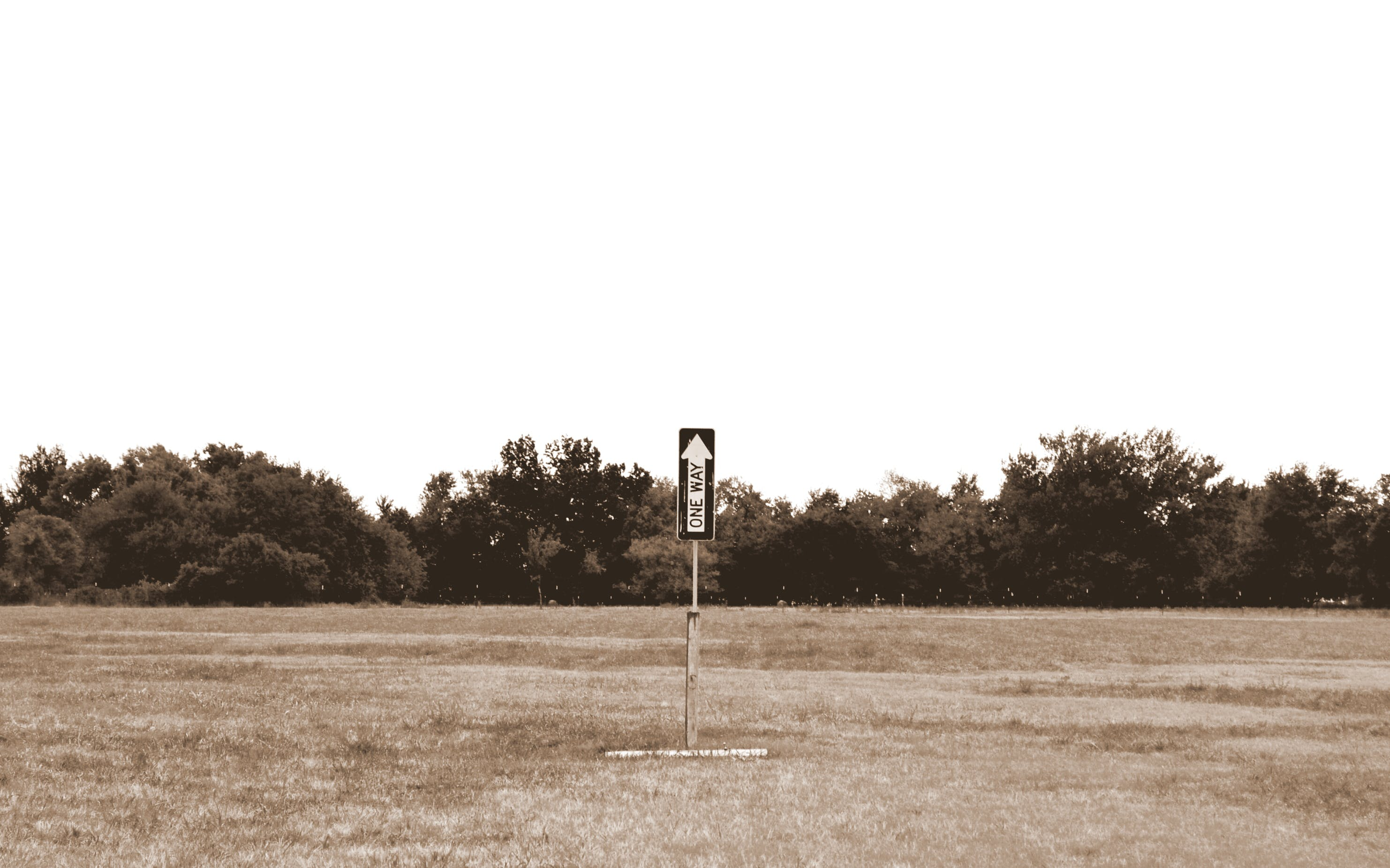 Free stock photo of field, sign, arrow, sepia