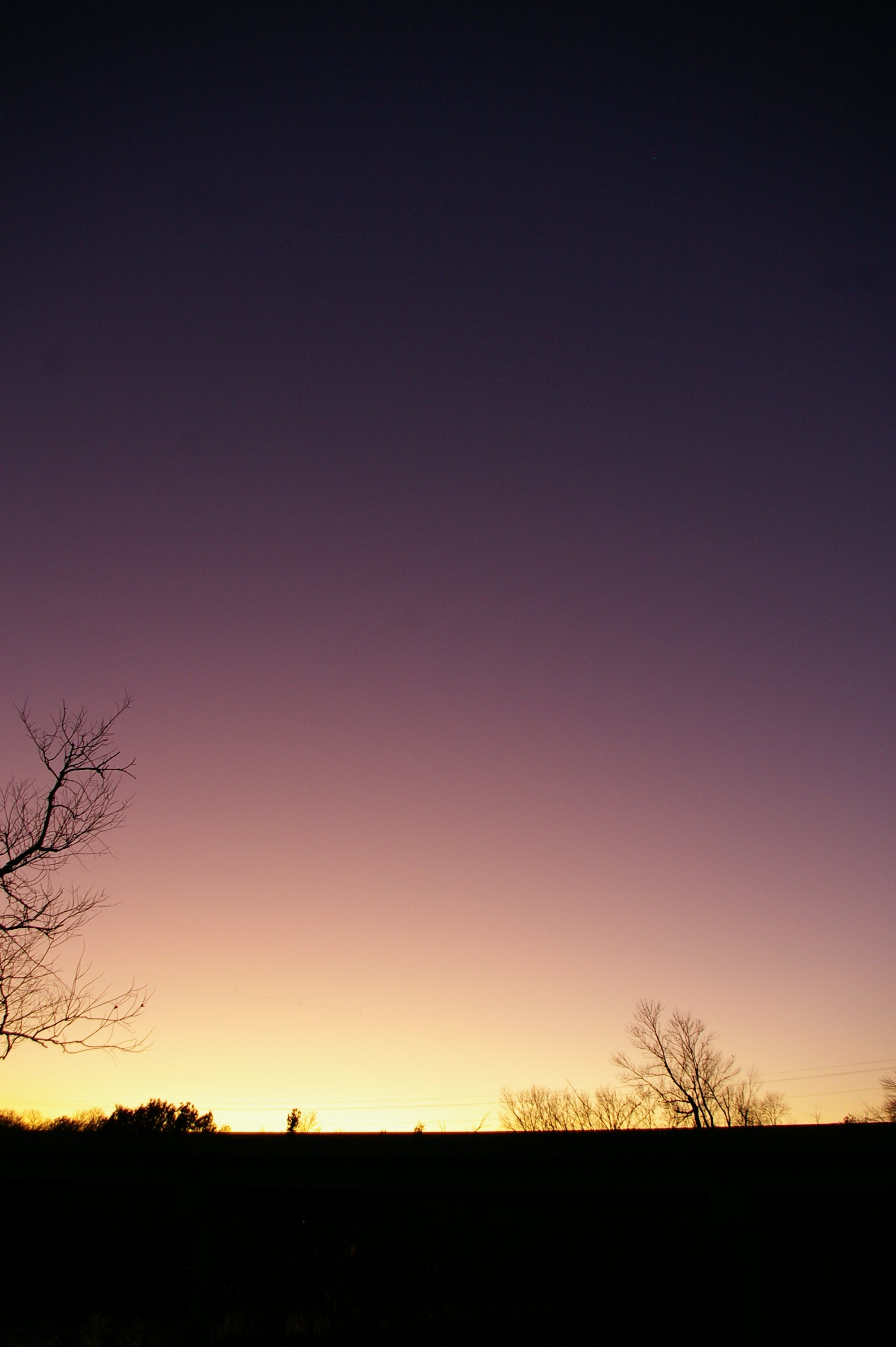 Free stock photo of sunset, trees, purple sky, yellow sky
