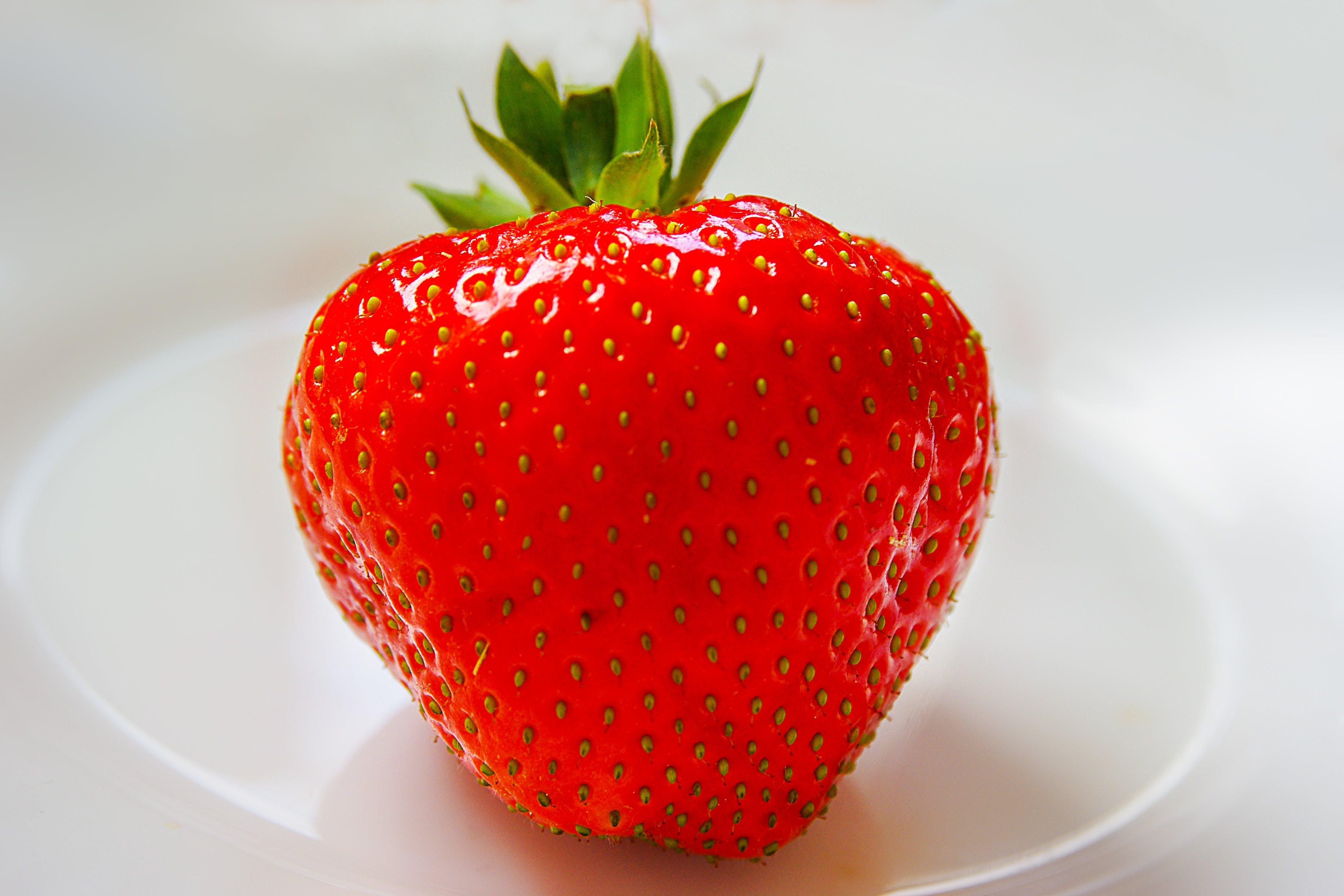 Foto stok gratis buah, makanan, makro, merah