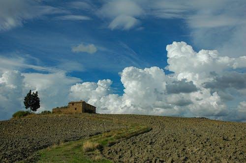 Free stock photo of tuscany