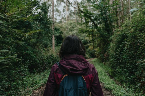 Faceless tourist walking in forest