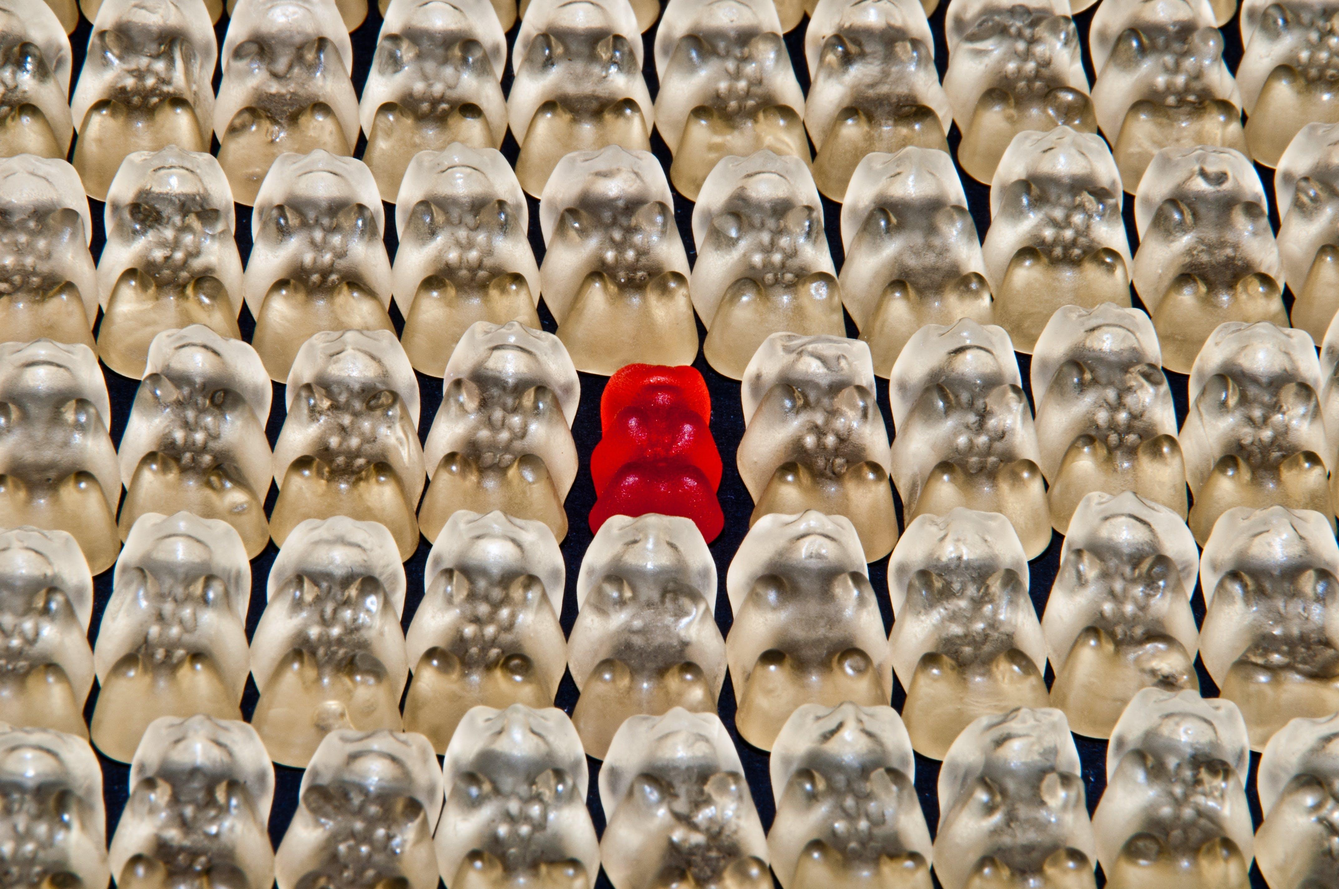 Foto stok gratis aneh, berbeda, beruang gummi, diferensiasi