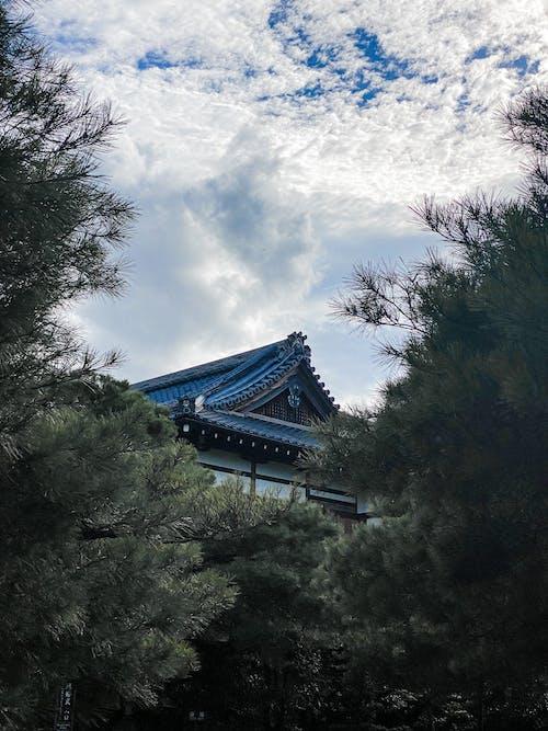 Photos gratuites de culture japonaise, japon, photos de couverture d'album