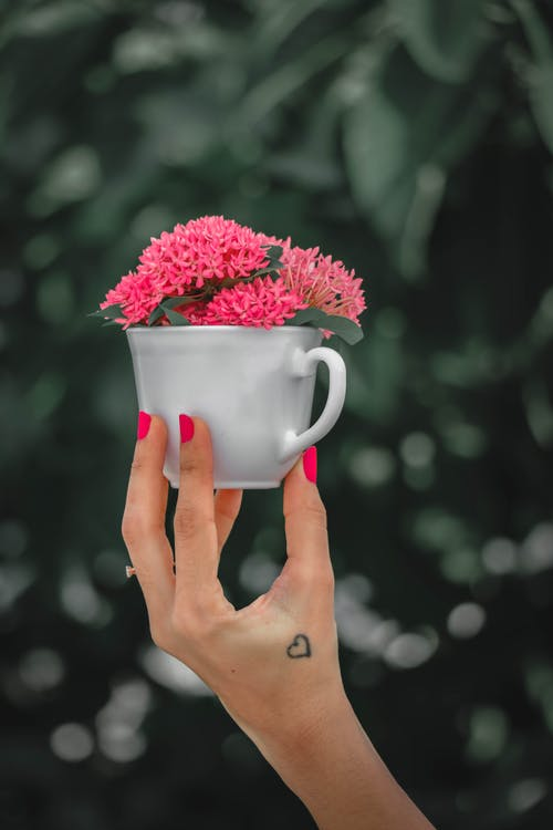Faceless woman with manicured fingers and small tattoo demonstrating small white cup with pink flowers