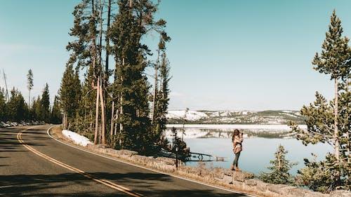 Fotobanka sbezplatnými fotkami na tému cesta, cestovať, exteriéry, fotenie