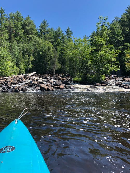 Free stock photo of kayaking, oxtongue river, rapid falls