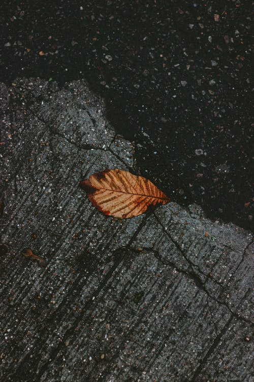Foto d'estoc gratuïta de a l'aire lliure, angle alt, asfalt, baixa