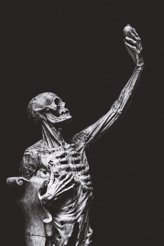 dream of dead body, dream of dead bodies