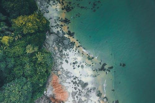 Foto stok gratis air, alam, batu