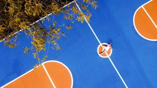 冬季, 原本, 太陽, 娛樂 的 免費圖庫相片