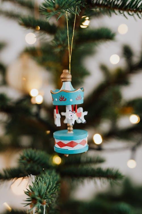 Imagine de stoc gratuită din adâncime de câmp, brad de crăciun, decorațiune de crăciun
