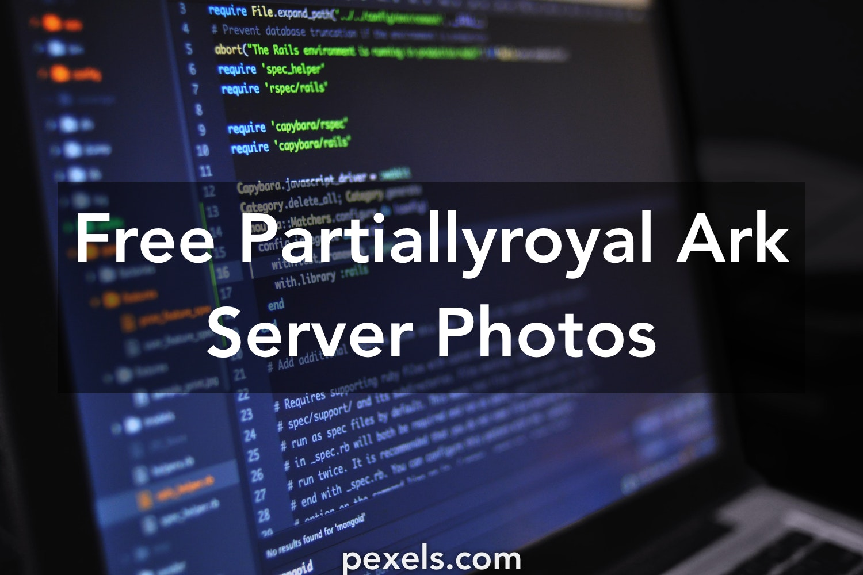 20+ Beautiful Partiallyroyal Ark Server Photos · Pexels · Free Stock