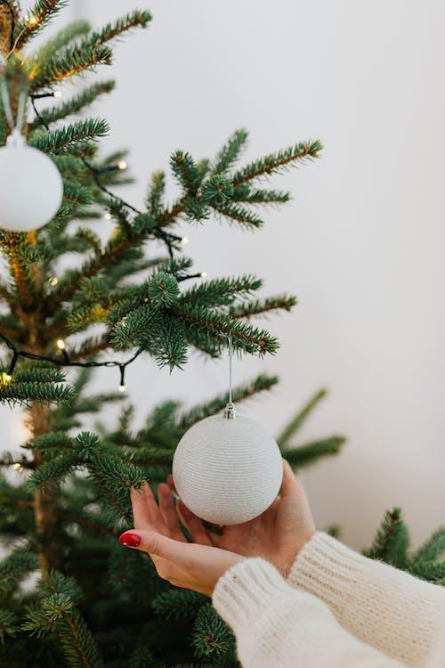 Photos gratuites de arbre de noël, boules de noël, décor