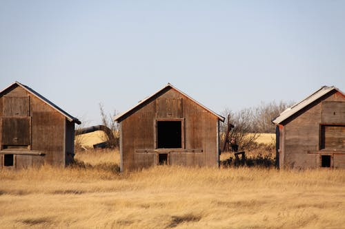 Abandoned Barns on Brown Grass Field