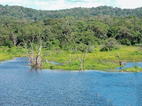 Kostnadsfri bild av blå sjö