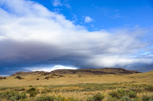 Hills located in steppe with grass and bushes