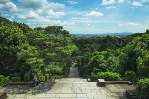 From above of long stairway leading through lush exotic green trees under cloudy blue sky in Fushimi Momoyama Castle park