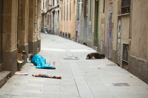 Homeless person lying on ground in blue sleeping bag on street with lonely dog nearby