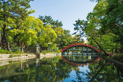 Picturesque view of green Sumiyoshi Grand Shrine temple territory in Osaka Japan on summer sunny day