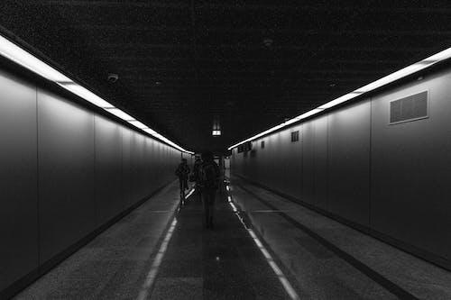 Бесплатное стоковое фото с Аэропорт, выход, линия, люди