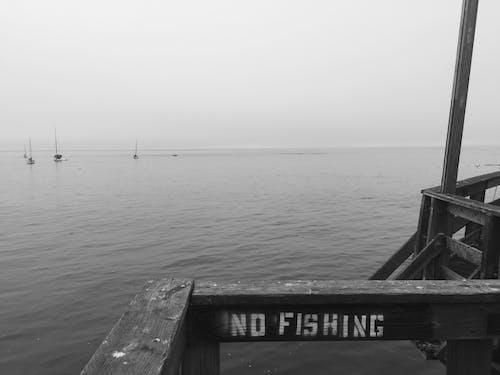 Free stock photo of No Fishing
